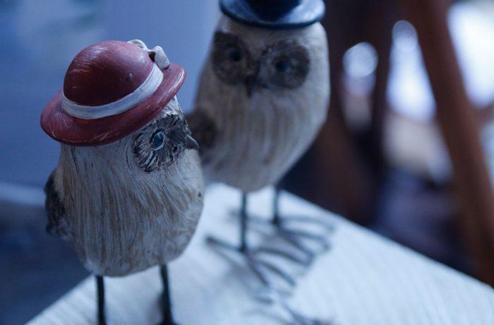 seltsame Vögel